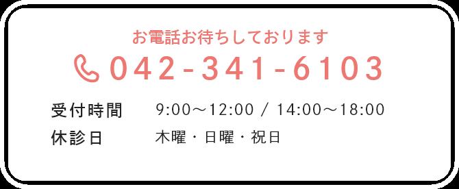 042-341-6103
